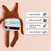 organizing-labels-ruitjes-roze-ruitjes-met-blauwe-rand